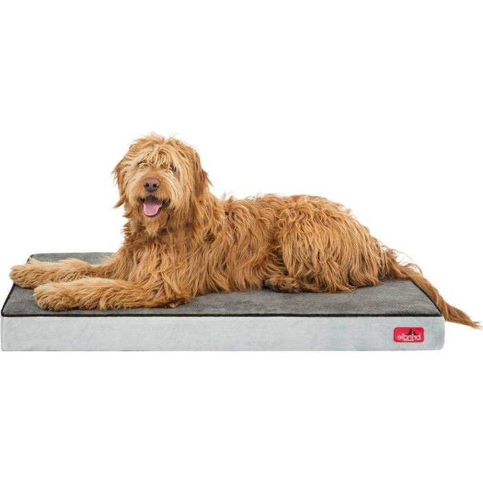 These Are The 5 Best Orthopedic Beds For Large Dogs Fupping